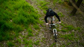 Mountain Biker Making Cross-Country. Spring Forest stock footage