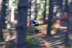 Mountain Biker. A male downhill Mountain Biker goes down the hill amongst the trees stock photos