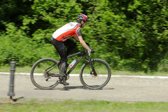 Mountain biker racing Stock Image