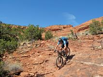 Mountain biker in the red rocks, Sedona, USA stock images