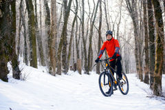 Mountain Biker Resting Bike on the Snowy Trail in Beautiful Winter Forest Royalty Free Stock Image