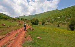 Mountain biker riding the bike in road among green meadows