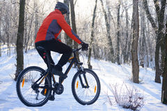 Mountain Biker Riding Bike on the Snowy Trail in the Beautiful Winter Forest Lit by Sun Stock Photo