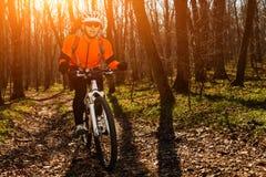 Mountain biker riding on bike in springforest landscape. Royalty Free Stock Image