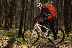 Mountain biker riding on bike in springforest landscape. Royalty Free Stock Images