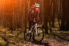 Mountain biker riding on bike in springforest landscape. Royalty Free Stock Photos