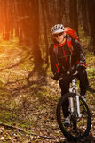Mountain biker riding on bike in springforest landscape. Royalty Free Stock Photo