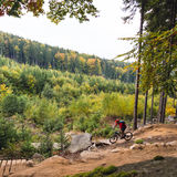 Mountain biker riding cycling in autumn forest Royalty Free Stock Photos