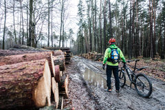 Mountain biker riding cycling in wet autumn forest Stock Image