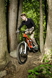 Mountain biker riding downhill Royalty Free Stock Photography