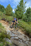 Mountain biker riding though Swiss mountain area Royalty Free Stock Photography
