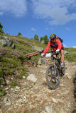 Mountain biker riding though Swiss mountain area Stock Photography