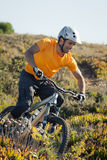 Mountain biker riding trail Royalty Free Stock Photo