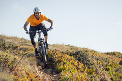 Mountain biker riding trail Stock Images