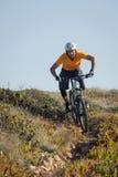 Mountain biker riding trail Stock Photo