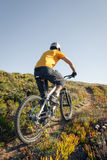Mountain biker riding trail Royalty Free Stock Photography