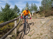 Mountain biker riding trails in Wales Royalty Free Stock Photography