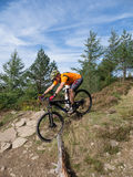Mountain biker riding trails in Wales royalty free stock images