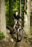 Mountain biker riding through trees Royalty Free Stock Photography