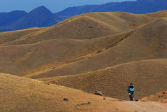 Mountain biker on road in desert mountain Royalty Free Stock Images