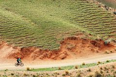 Mountain biker on rural road Stock Photography