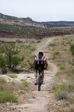 Mountain Biker on Rustler's Loop. Mountian biker in a desert landscape above the Colorado River near Loma, Colorado Royalty Free Stock Photography