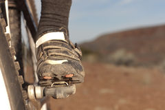 Mountain Biker's Shoe Stock Image