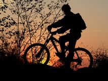 Mountain biker silhouette. With orange sunrise Stock Photography