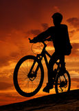 Mountain biker silhouette in sunrise. Silhouette moving cyclists in the sunrise Stock Photography