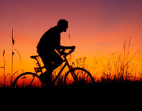 Mountain biker silhouette in sunset Royalty Free Stock Image