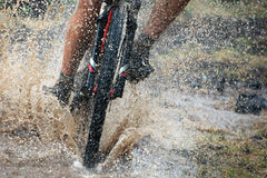 Mountain biker speeding through forest stream Stock Image