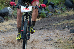 Mountain biker speeding through forest stream Royalty Free Stock Images