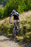 Mountain biker on trails Stock Images