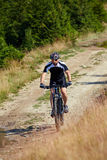 Mountain biker on trails Stock Image