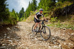Mountain biker on trails Stock Photo