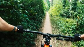 Free Mountain Biker Training In Forest Royalty Free Stock Photography - 195292787