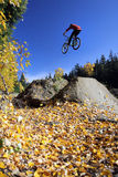Mountain biker, Whistler Stock Photo
