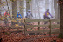 Mountain bikers Stock Images