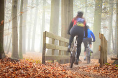 Mountain bikers Stock Photography