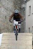 Mountain bikers Stock Image
