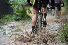 Mountain bikers driving Royalty Free Stock Photography