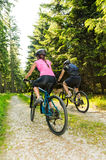 Mountain bikers in forest from behind Royalty Free Stock Photography