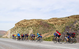 Mountain bikers group on road Stock Images