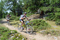 Mountain bikers riding though Swiss mountain area Stock Photos