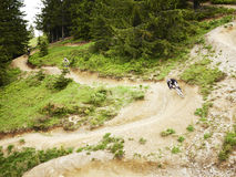 Mountain Bikers riding through woods Stock Photos