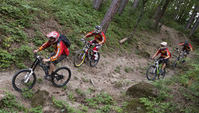 Mountain bikers Royalty Free Stock Images