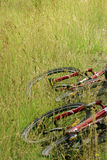 Mountain bikes in grass. Two mountain bikes laying in high grass Royalty Free Stock Photography
