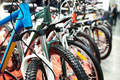 Mountain bikes in sports shop Royalty Free Stock Photo