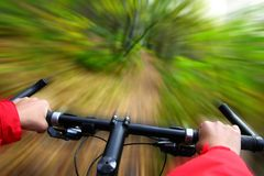Mountain Biking. Speed on Mountainbike. Biking in the forest motion blurred for speed effect Stock Image
