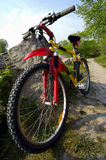 Mountain Biking. An un-branded mountain bike with front shocks and seat-post shocks sitting along a dirt trail Royalty Free Stock Images